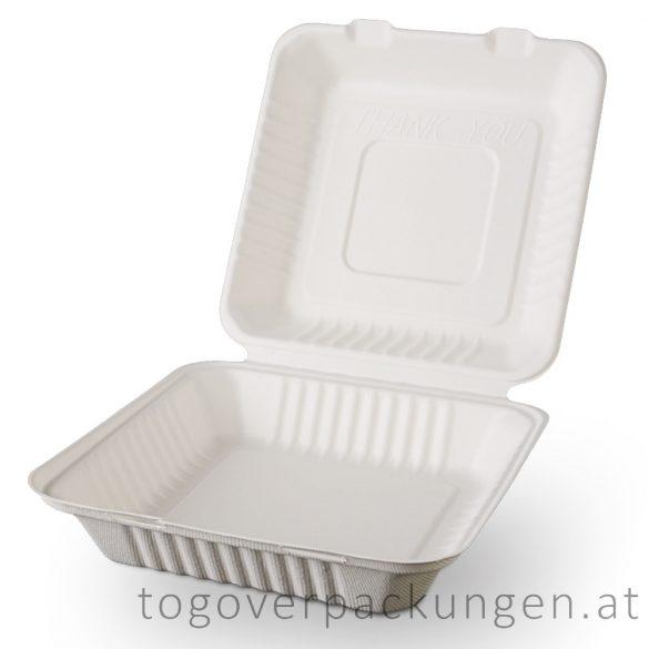 Kompostierbare Zuckerrohr-Menübox, 230 x 230 x 80 mm / 100 Stück