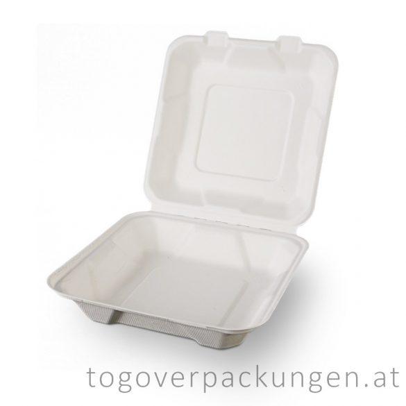 Kompostierbare Zuckerrohr-Menübox, 205 x 205 x 65 mm / 50 Stück