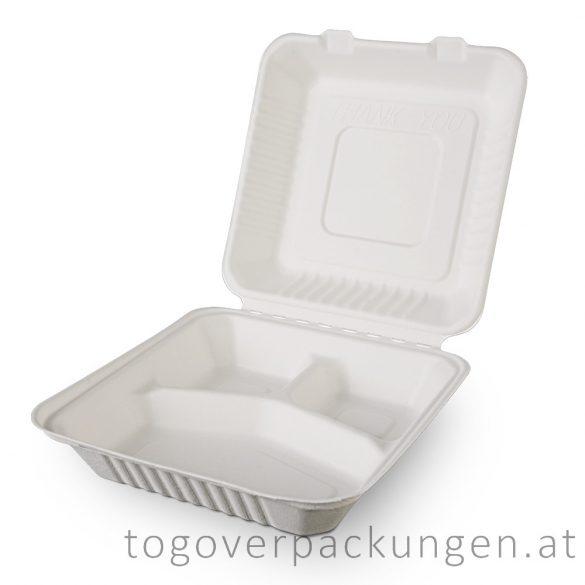 Kompostierbare Zuckerrohr-Menübox, 205 x 205 x 65 mm, 3 teilige / 100 Stück