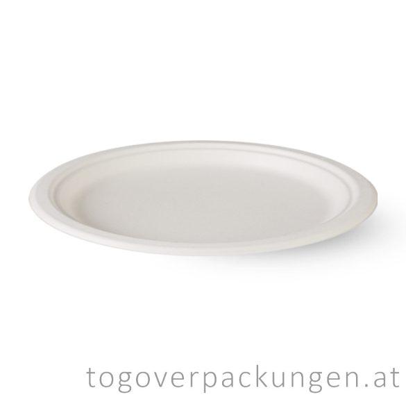 Kompostierbar Zuckerrohr Oval-Teller, 260 mm / 125 Stück